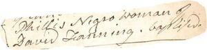 1784.BAP.Phillis_Fanning.JPG